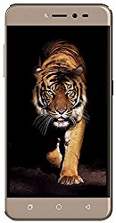 Coolpad Note 5 Lite (Royal Gold, 3GB RAM,16 GB, Dual SIM) @ Rs.8399