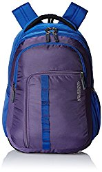 American Tourister 27 Lts Comet Purple Laptop Backpack @ Rs.1360